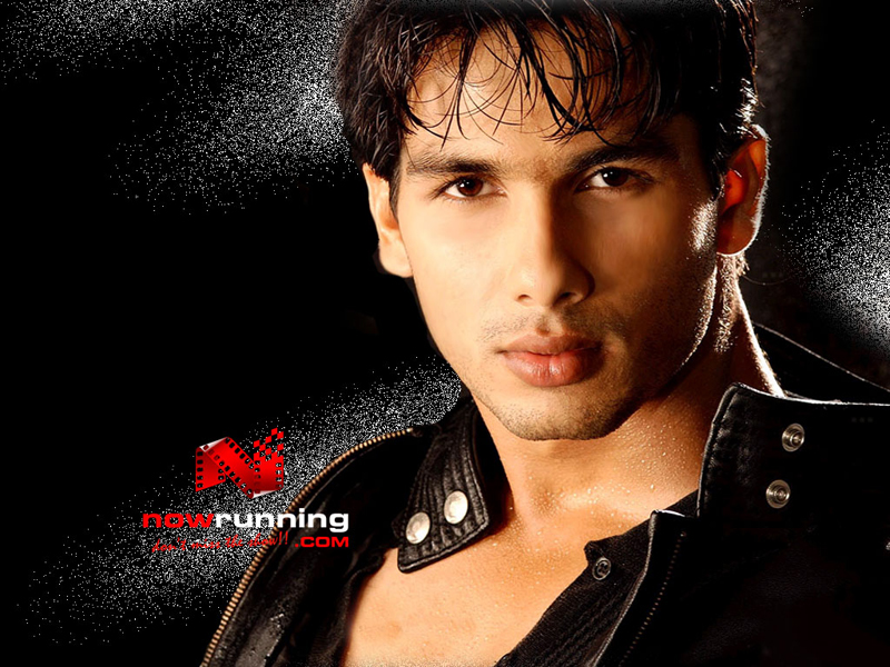 Shahid kapoor picture gallery 18 images