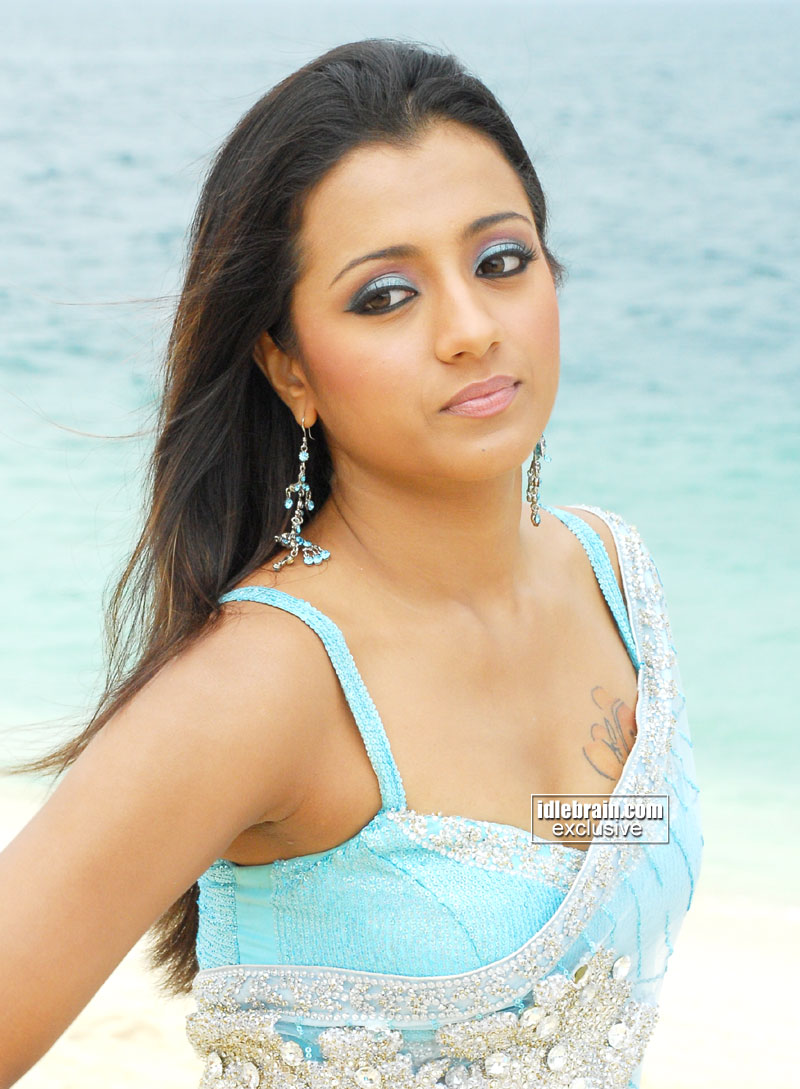 Trisha to star in another